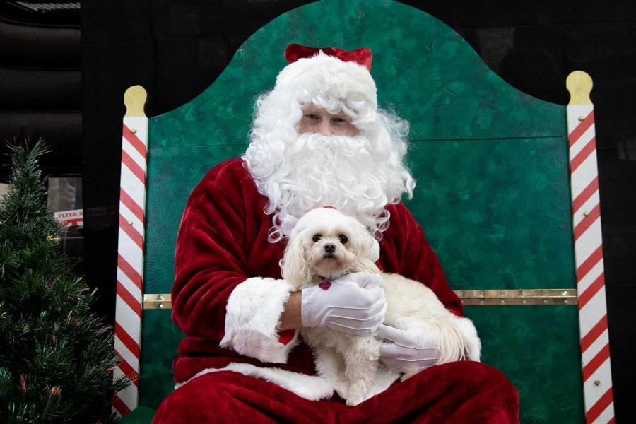 Santa Photos-047